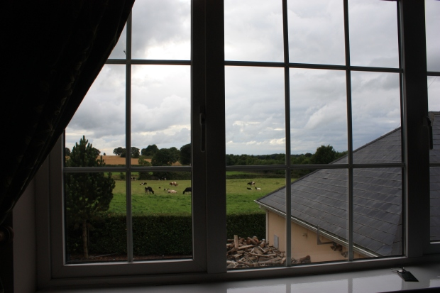 Outside my window / Aulber House in Cashel, IRE